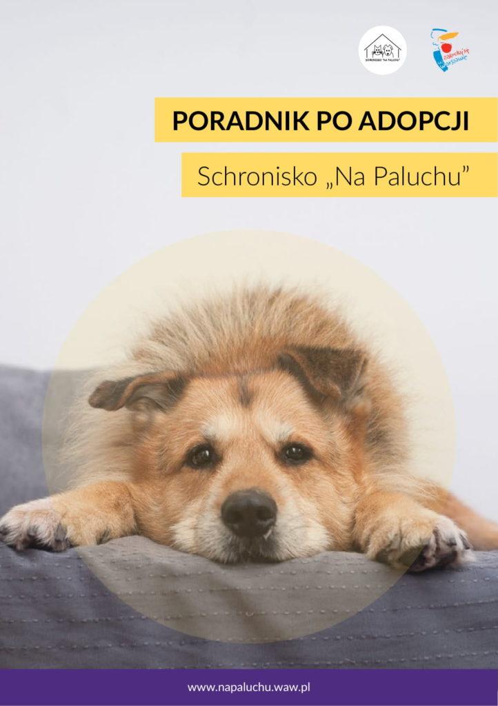 Psi poradnik po adopcji