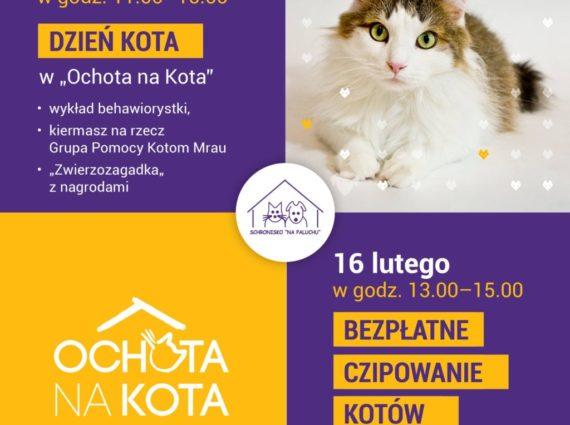 Dzień kota i bezpłatne chipowanie